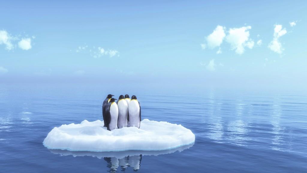 Calentamiento global no existe pinguinos