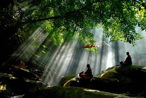 cambiar de vida meditar