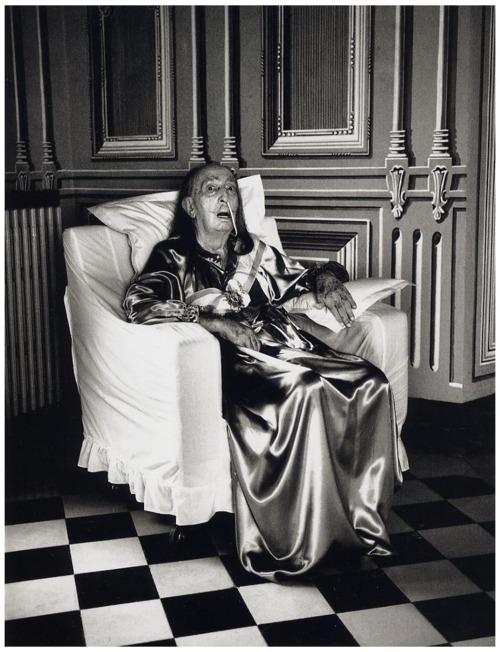Cuadros de Dalí -  Helmut Newton