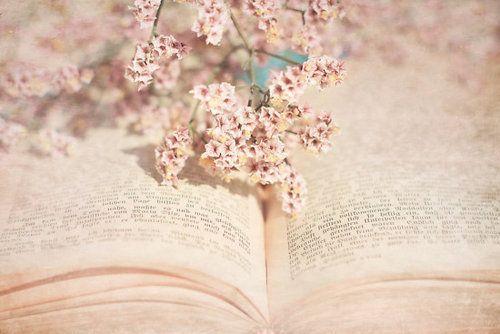 Novelas nuevas de amor