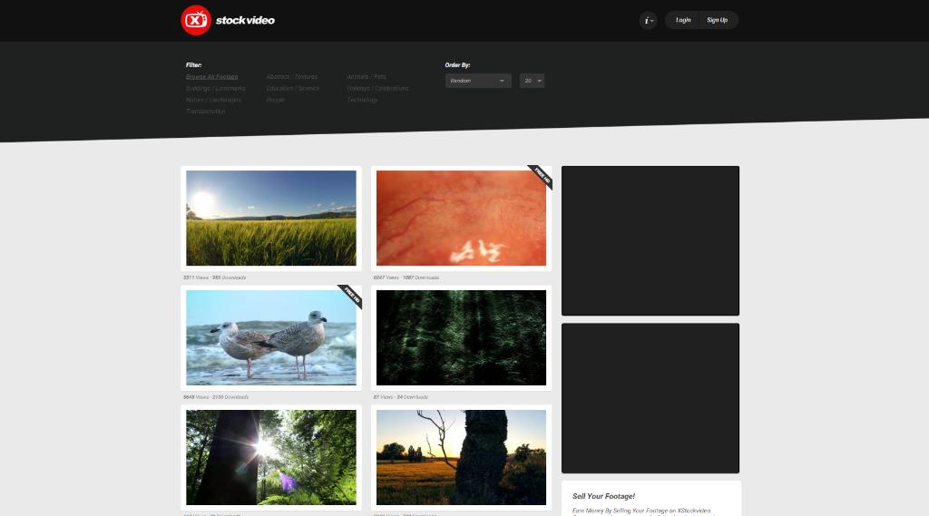 paginas video stock