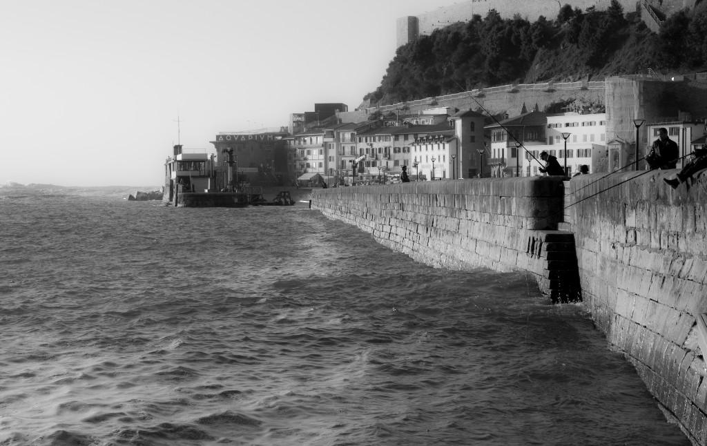 poetas puerto