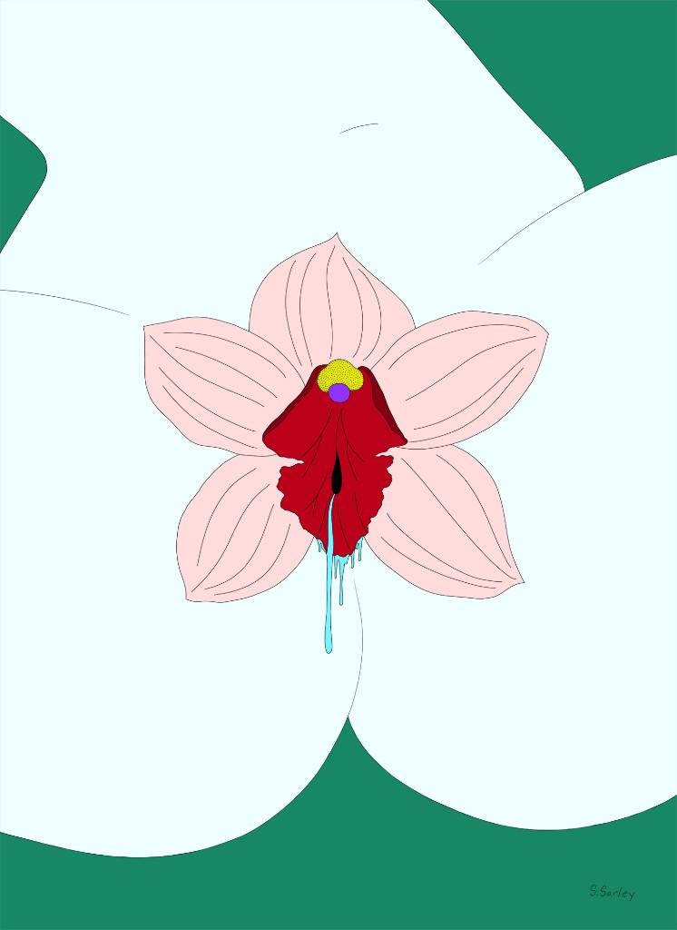 stephanie sarley flor fondo azul
