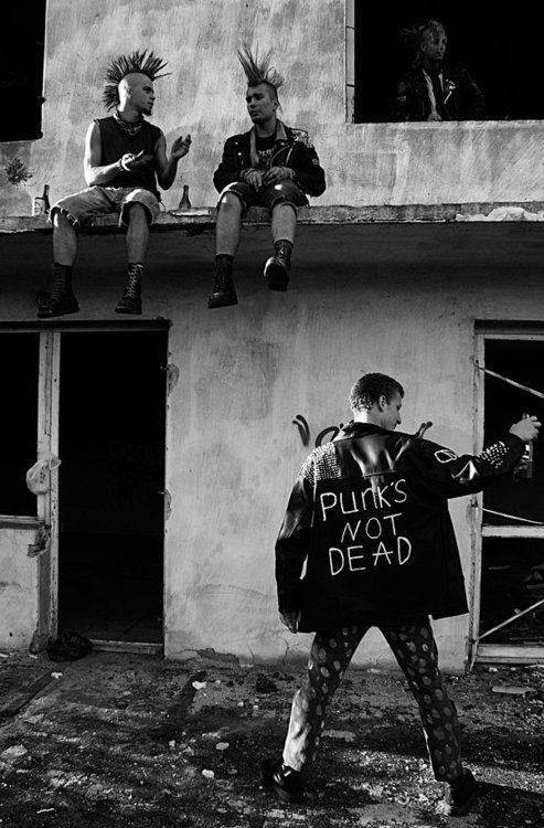 verdadero punk not dead