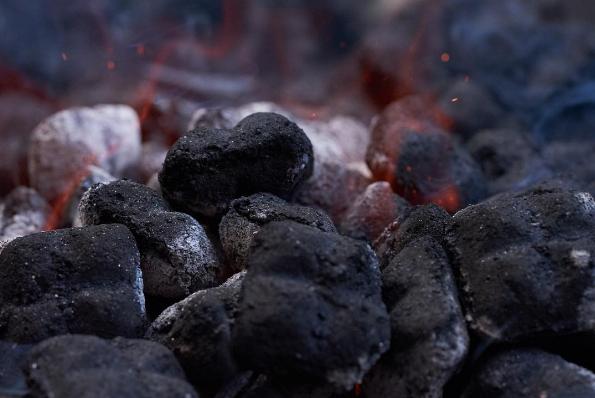 carne asada carbon