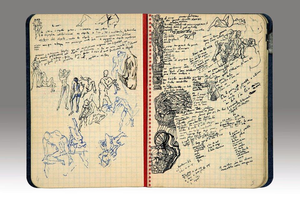 Diarios de Dali cuerpos
