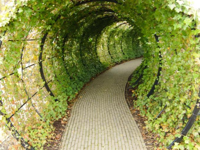 jardin venenosos de alnwick entrada