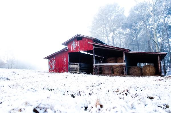 musica a traves de imagenes nieve