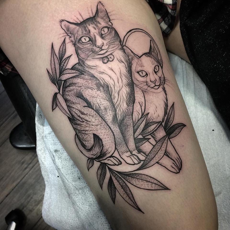 sketch tattos gatos