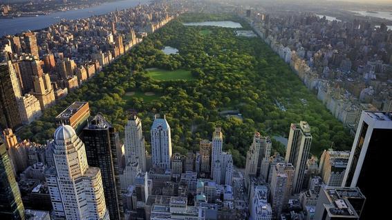 central park encontrar trabajo en new york