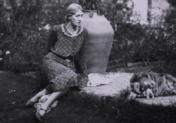 Virginia Woolf dog