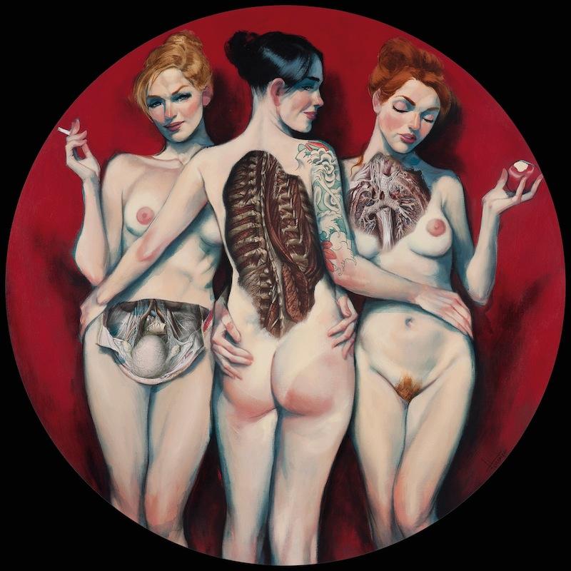 anatomía del cuerpo femenino