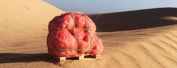 andrea-hasler-flesh-scultpure-perishable-goods-moroccan-sahara-desert-designnboom-1800