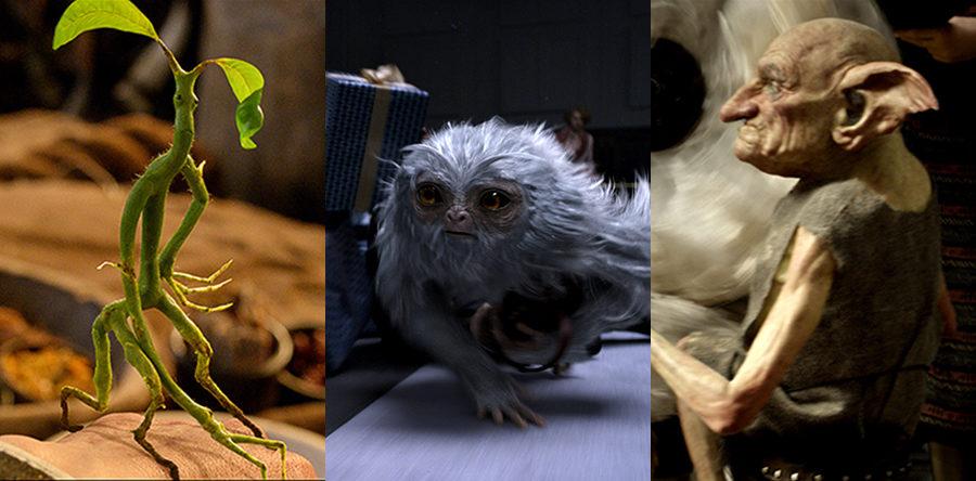 Animales fantásticos que tal vez sí existen y dónde