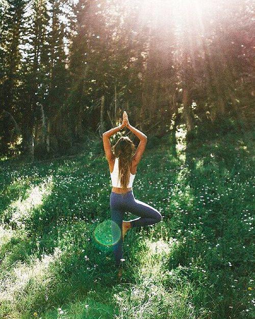 meditacion bosques