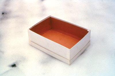 Caja de zapatos vacia 1993