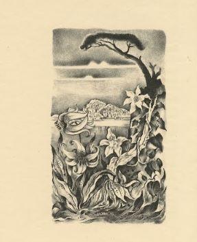 edgar allan poe illustrations 5