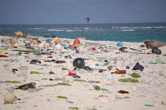 basura-marina