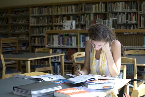 buscadores academicos libreria