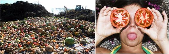 reducir la basura 12