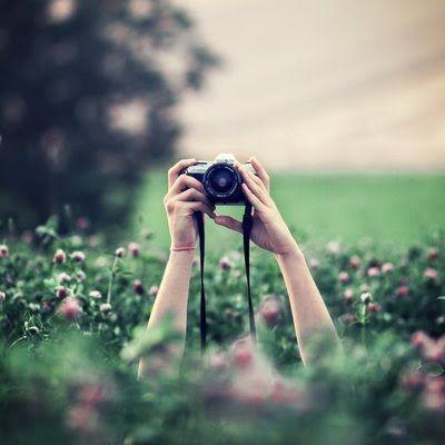 tips para tomar fotografias plantas