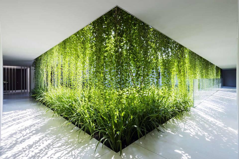 casa verde futuro de la arquitectura