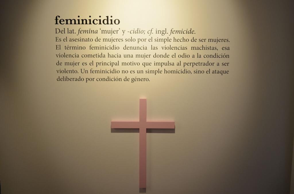 definicion de feminicidio
