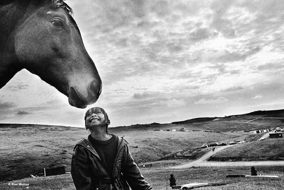 fotografas elsa medina caballo