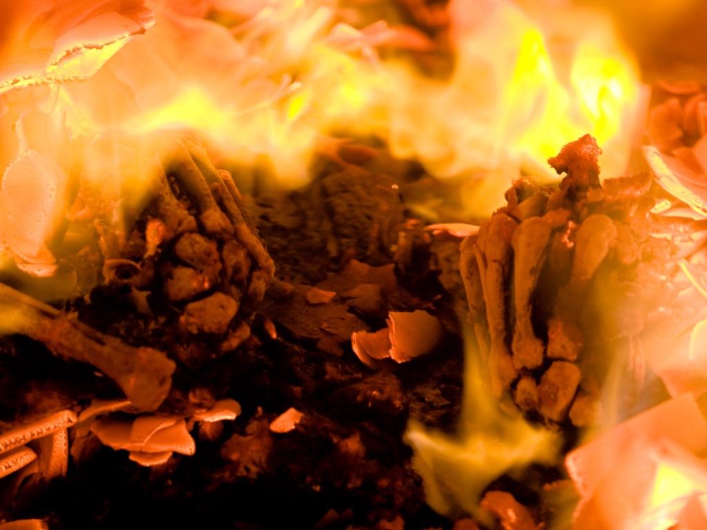 huesos crematorios fotos controvertidas