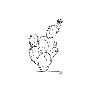 ilustraciones para tatuajes cacto
