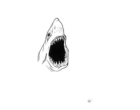 ilustraciones para tatuajes tiburon