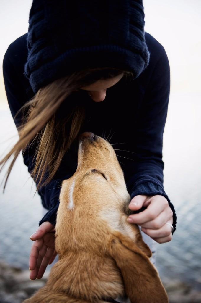 Adoptar a una mascota