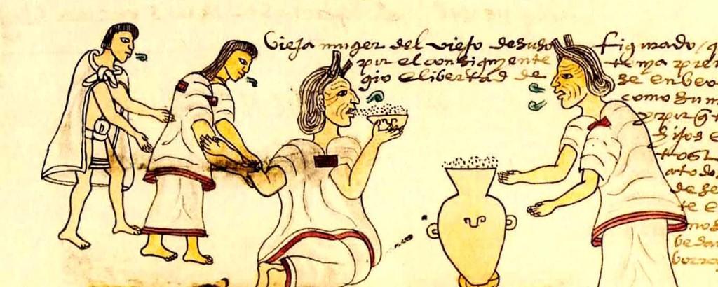 pulque en el mexico prehispanico codice