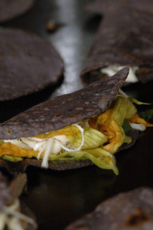 quesadilla comida maya
