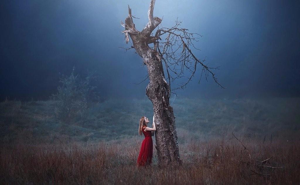 sad girl photography dead tree