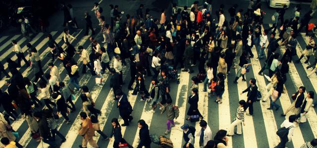 El Fen U00f3meno Social Que Hace De La Individualidad Un Eco