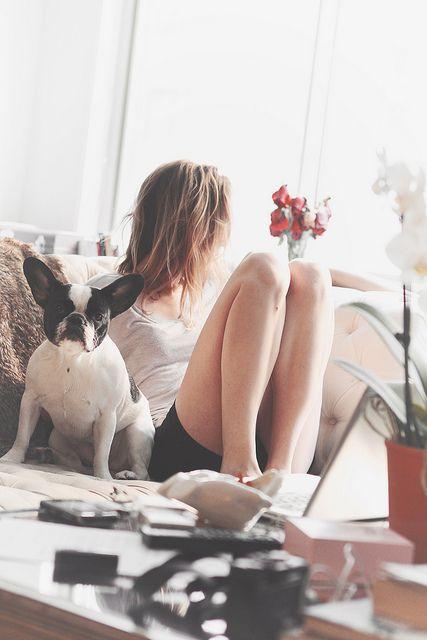 ventajas de terminar una relacion perro