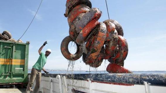 llantas contaminan los oceanos