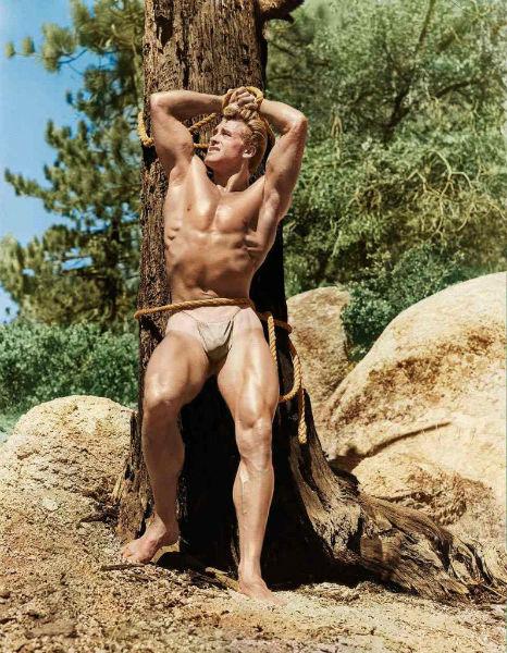 Bob Mizer mens nudity tree-w636-h600