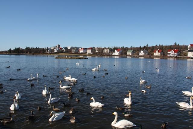 Lago-Tjornin ciudades que debes visitar