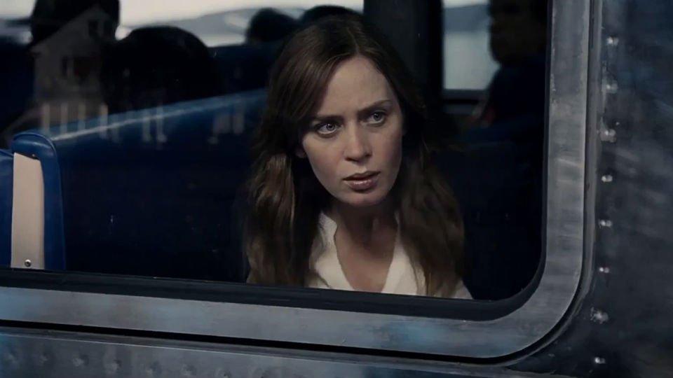 Novels Alcohol Drunk Girl on the Train
