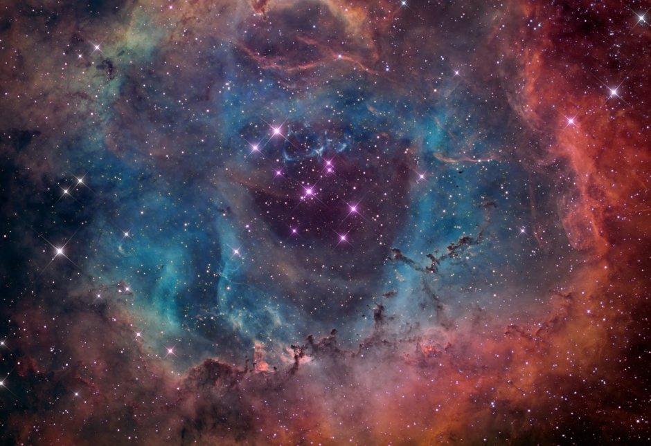 cosmos libro universo