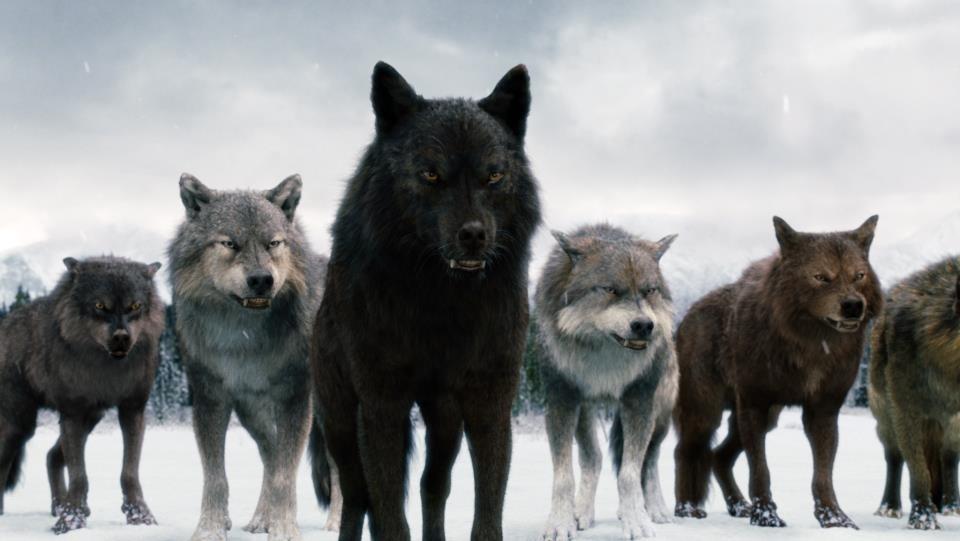 creer en los hombres lobo personas