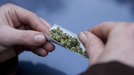 propensos a consumir marihuana