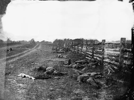 mejores fotografias de la historia campo