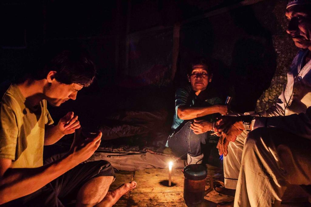 beneficios de la ayahuasca