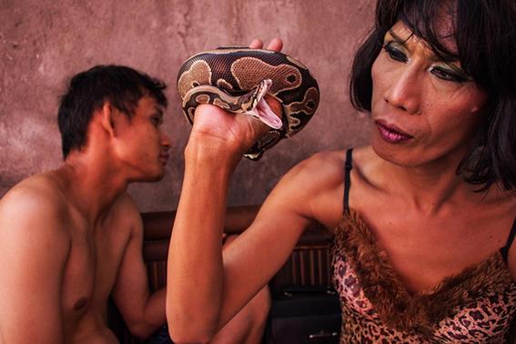 serpiente-comunidad-transgenero