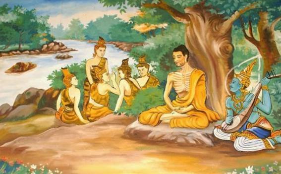 sidharthavida