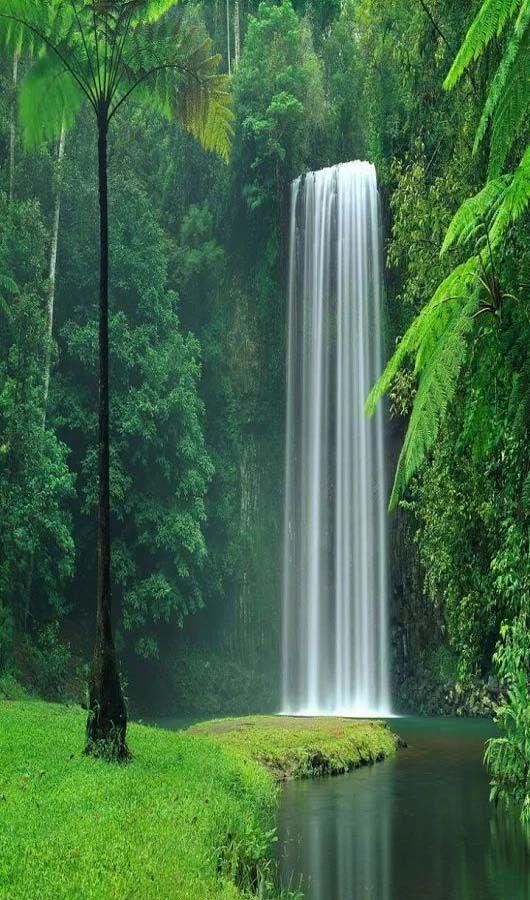 viajar a australia cascada