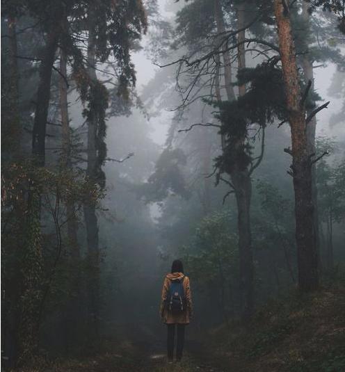viajar para superar una ruptura bosque